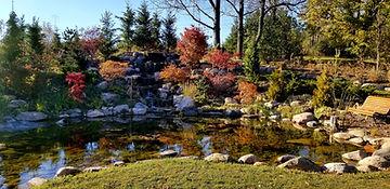 Koi Pond & waterfall in the fall.jpg