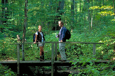 Peter B  Hiking Peters Woods_003.jpg