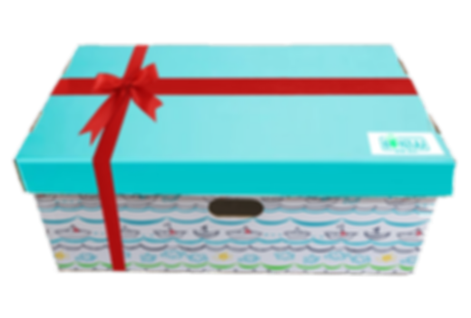 gift wrap box with ribbon copy.png