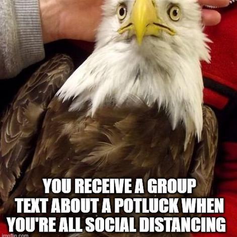 That Moment When Eagle – Potlucks