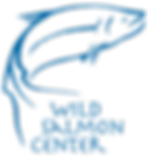 WSC logo blue.png