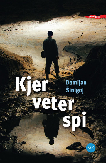 Damijan Šinigoj - Kjer veter spi