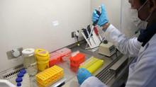 Se suma cuarto laboratorio para porcesar muestras PCR Covid-19 a la zona