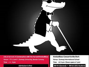 Concert in the Dark 2016 (Harvard Krokodiloes World Tour 2016)