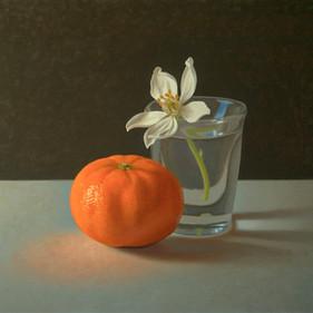 Alex Callaway RBSA, Orange Blossom in a Shot Glass