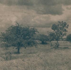Caitriona Dunnett,  Hurley's View, Lackaghbeg, A Well Trodden Path