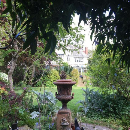 Virtual Garden Tour: Explore Michele White's extraordinary Birmingham garden