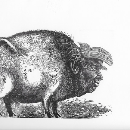 Leading wood engraver Hilary Paynter talks to the RBSA about her current show