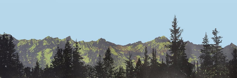 Harforth.Tom.Spruce and Ridge 3.jpg