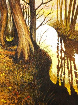 Autumnal Brook