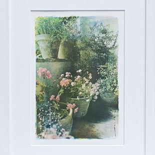Alan Glover, Pots on a Patio, £150