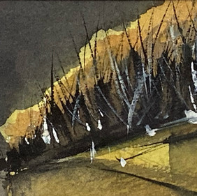 Chris Tkacz RBSA, Yellow Hill