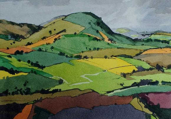 Field Patterns, Welsh Marches, Nigel Priddey
