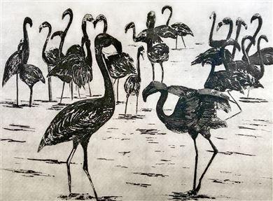 Linda Nevill Flamingoes