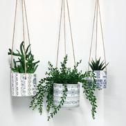alex-allday-hanging-planter-potsjpg