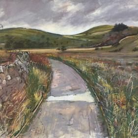 Caroline Griffin RBSA, Path to Malham Moor