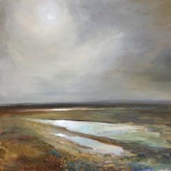 Late evening, low, low tide, Sherkin