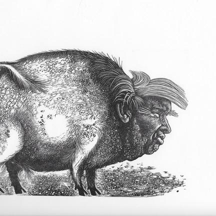 Hilary Paynter's Wood Engravings: major retrospective at RBSA