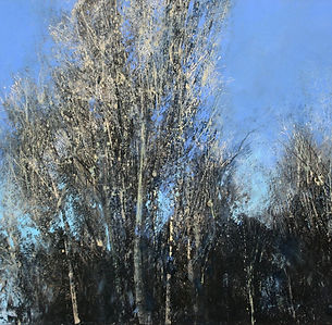 Perry-Rob-18WfA1-01-2-45pm-19-April-2018-Spring-Sunlit-Treetops-in-the-Wyre-Forest-Oil-1300.jpg