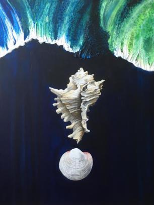 Sea. Shells