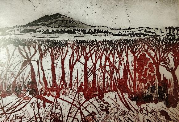 Hedgerow to Hillside - The Wrekin Card