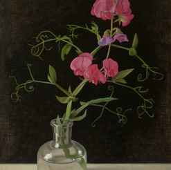 Wild Sweet Pea in a Bell Jar