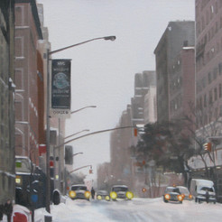 After the Snowstorm NYC