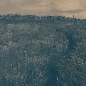 Caitriona Dunnett,  Kearney's Field, Path 1, A Well Trodden Path