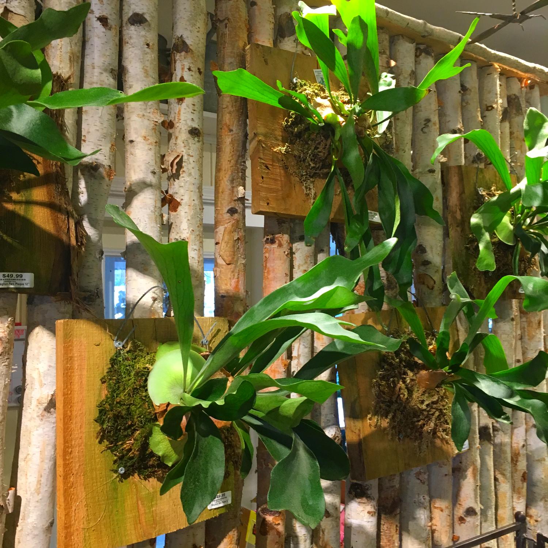 Hanging Garden Plaque