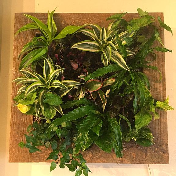Hanging Garden Plaque; Hanging Wall Garden ...