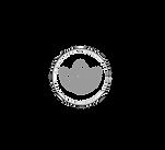 icone avenir-02.png