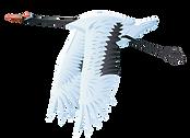 Large_Bird_Crane_PNG_Vector_Clipart_edit