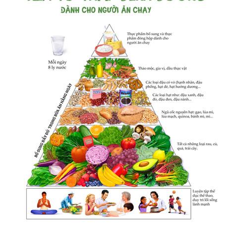 [Ăn chay] Cân bằng với tháp dinh dưỡng