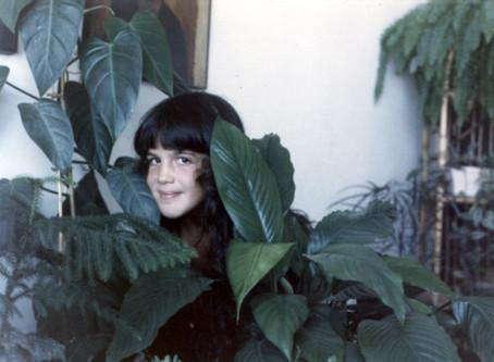 צמחים להמונים – סקר המשתלות הקטן