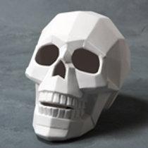 Faceted Skull
