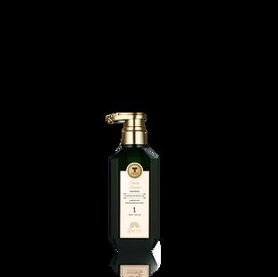 revice-shampoo.png
