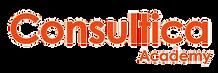 Tanja Saarinen | Sertifioitu WSA- asiantuntija | Consultica Oy