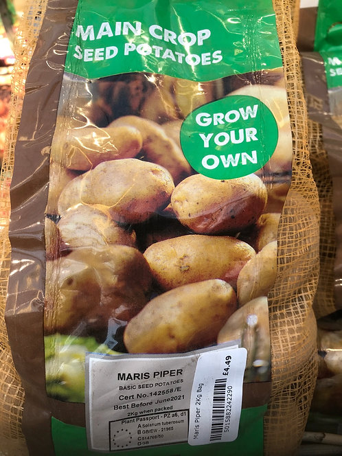 "Seed Potato ""Maris Piper"" Main Crop"