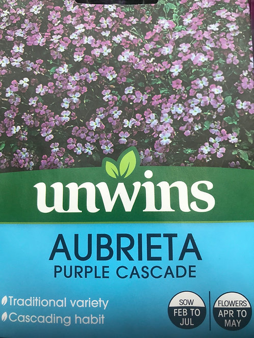 """Aubrieta """"Purple Cascade"""""""