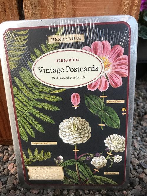 "Cavallini & Co ""Herbarium"" Vintage Postcards"