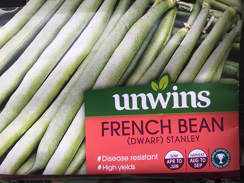"Dwarf French Bean ""Stanley"""