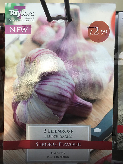 "French Garlic ""Edenrose"" (2)"