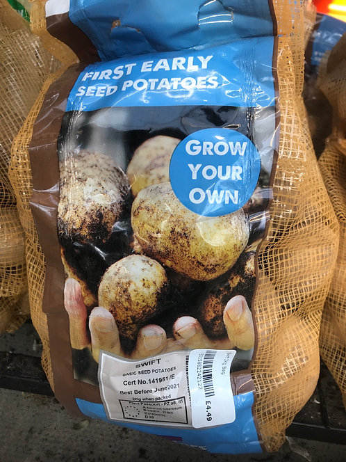 """Seed Potato """"Swift"""" First Early"""