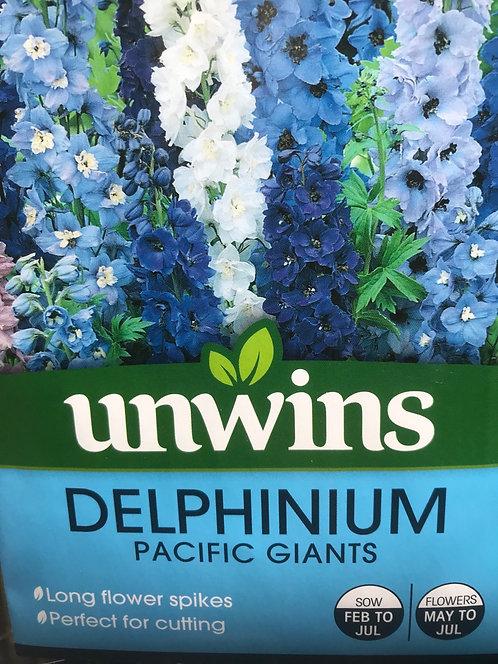 """Delphinium """"Pacific Giants"""""""
