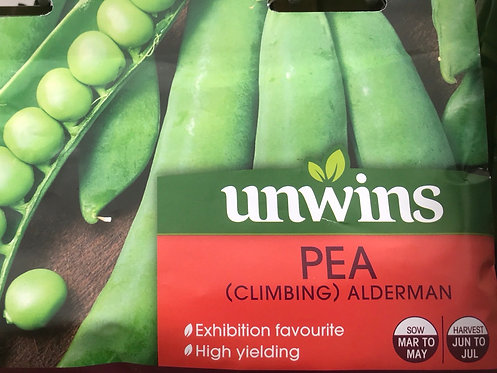 "Climbing Pea ""Alderman"""