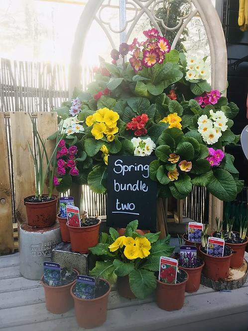 """Spring Bundle """"Two"""""""
