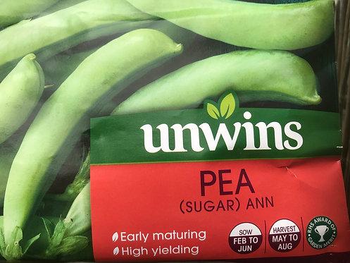 """Sugar Pea """"Ann"""""""