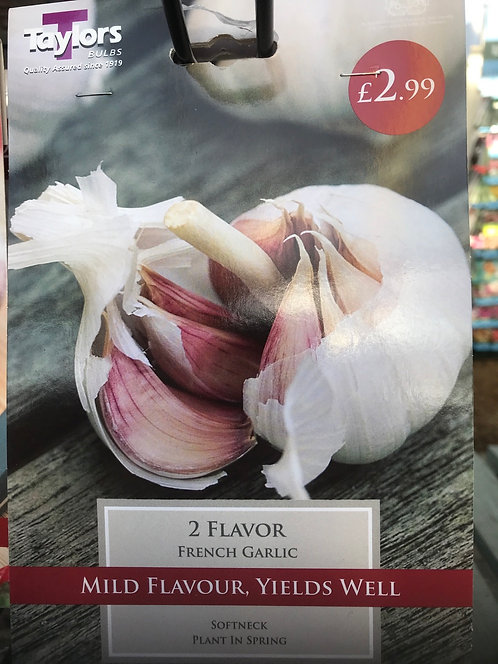 "French Garlic ""Flavor"" (2)"