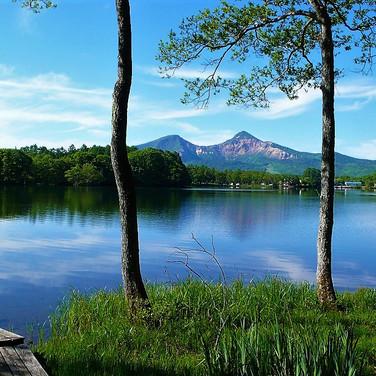 Calm lakeside, June