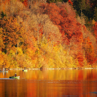 Autumn lake, October